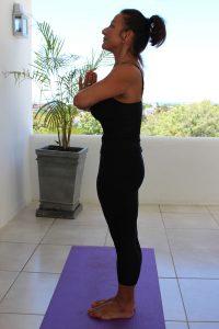 vilacqua-yoga-class-tai-chi